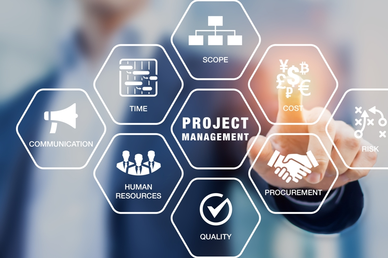 infographic Project management